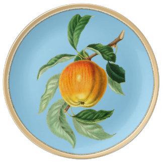 Hand Painted Apple Decorative Porcelain Plate