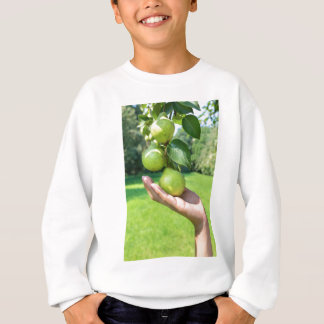 Hand showing branch with hanging green pears sweatshirt