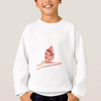 Hand showing model with inside of human kidney sweatshirt