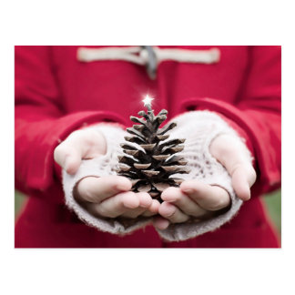 Hands holding a pine cone with a silver star postcard