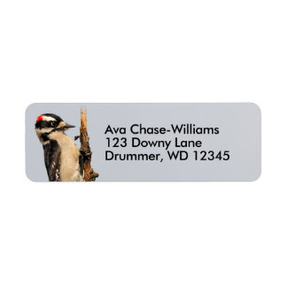 Handsome Downy Woodpecker on the Pear Tree Return Address Label
