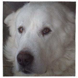 Handsome Great Pyrenees Dog Napkin