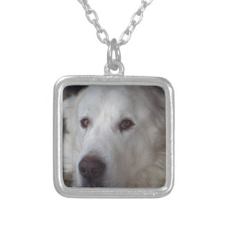 Handsome Great Pyrenees Dog Silver Plated Necklace