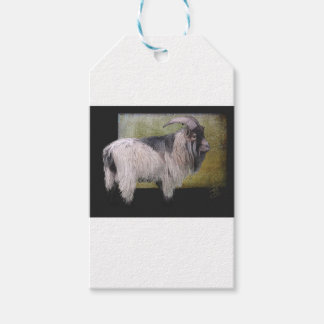 Handsome pygmy goat gift tags