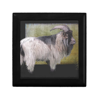 Handsome pygmy goat small square gift box