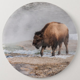 Handsome Young Bison or Buffalo 6 Cm Round Badge