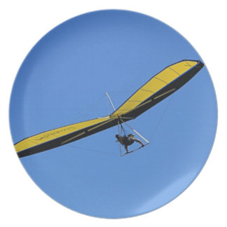 Hang glider in the sky plate