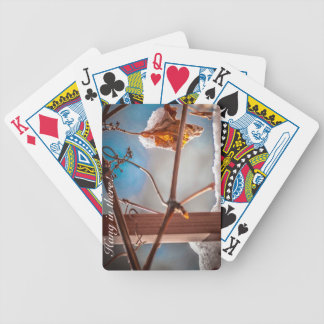 Hang in there bicycle playing cards