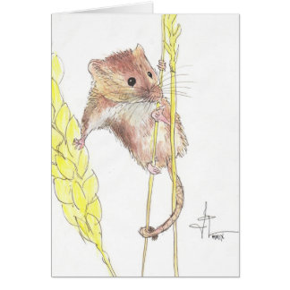 Hang In There, Dormouse! Card
