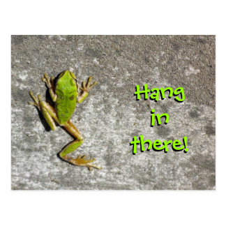 Hang in There Frog Postcard