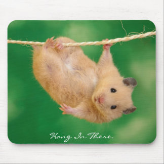 Hang in There Hamster Mouse Pad