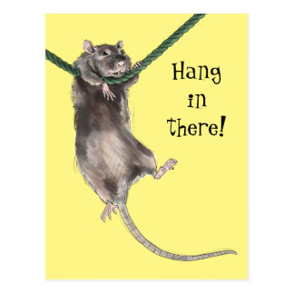 Hang In There Rat Postcard