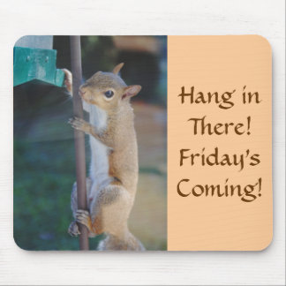 Hang in There, Squirrel on Bird Feeder Mouse Pad
