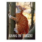 Hang in There with cat in tree photo Postcard