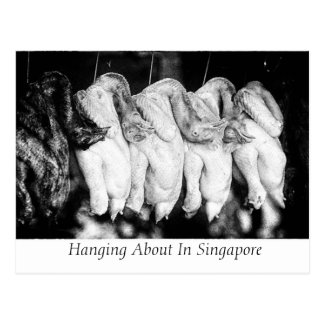 Hanging About In Singapore Postcard