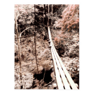 hanging bridge postcard