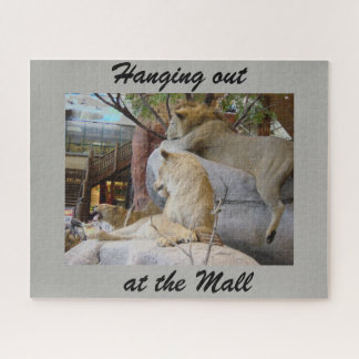 Hanging out at the mall puzzle