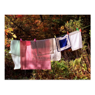 """Hanging Out"" No.1 POSTCARD Clothesline"