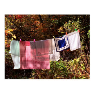 """""""Hanging Out"""" No. 1 postcard Country Clothesline"""
