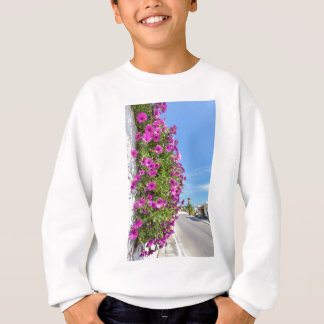 Hanging pink spanish daisies on wall near street sweatshirt