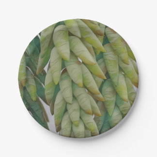 Hanging Succulent 7 Inch Paper Plate