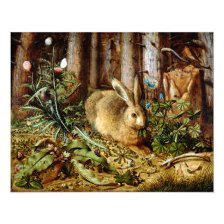 Hans Hoffmann A Hare in the Forest Photo Print