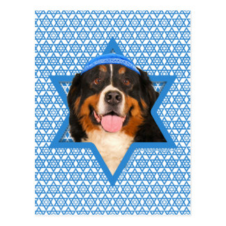 Hanukkah Star of David - Bernese Mountain Dog Postcard