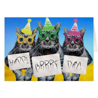 Happi Brrrf Day Kitty Trio Card