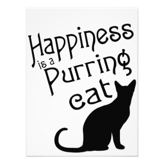 Happiness is a Purring Cat Photo