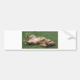 Happiness is a Roll in the Clover Bumper Sticker
