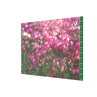 Happiness is sharing your JOYS .. Happy Images FUN Stretched Canvas Print
