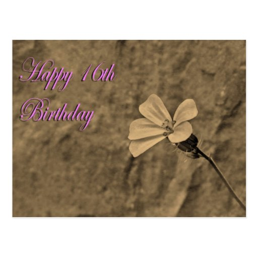 Happy 16th Birthday Flower and Stone in Sepia Postcard
