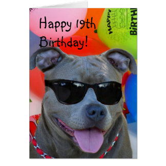 Happy 19th Birthday Pitbull greeting card