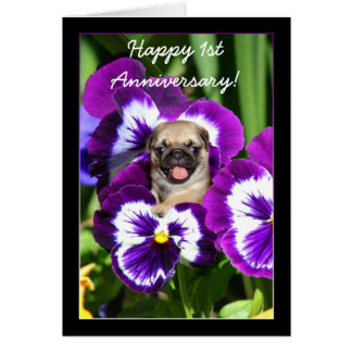 Happy 1st Anniversary Pug in pansies card