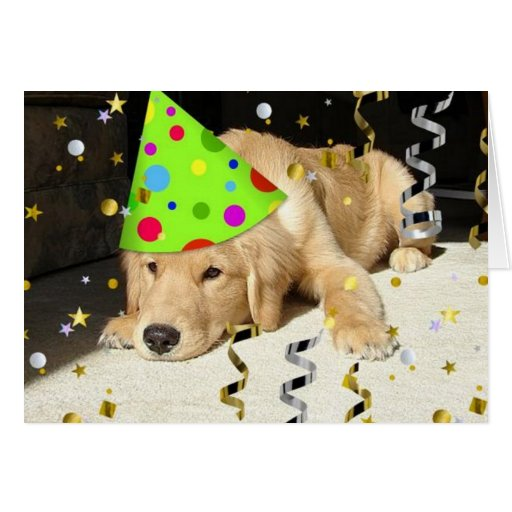 Happy 1st  Birthday Greeting Card