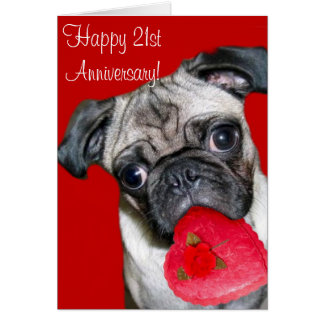 Happy 21st Anniversary pug greeting card