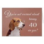 Happy 40th birthday, worried beagle