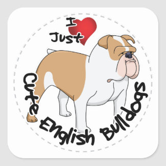 Happy Adorable Funny & Cute English Bulldog Dog Square Sticker