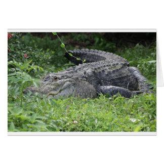 Happy Alligator Greeting Card