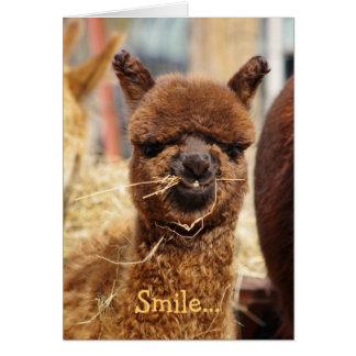 Happy Alpaca Card
