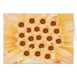 HAPPY ANNIVERSARY  -  Floral Treat Greeting Card