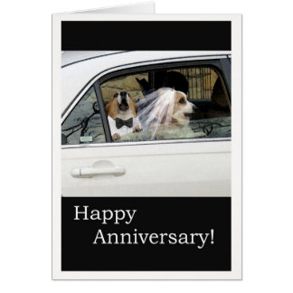 Happy Anniversary Greeting Card Dog Couple in Car