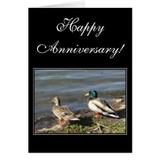 Happy Anniversary Mallard ducks greeting card
