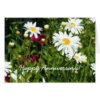 Happy Anniversary Shasta Daisy Greeting card