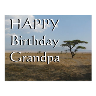 Happy B-day Grandpa Serengeti Plains Postcard