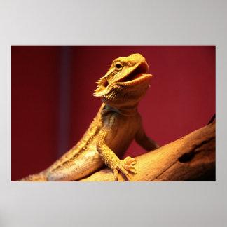 Happy Bearded Dragon Poster