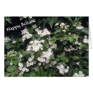 Happy Beltane (hawthorn blossom) Card