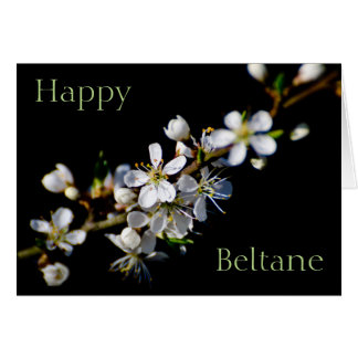 Happy Beltane (spring blossom) Card