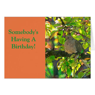 HAPPY BIRTHDAY/A LITTLE BIRD TOLD ME.... NOTE CARD