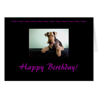 Happy Birthday Airedale Terrier Stationery Note Card